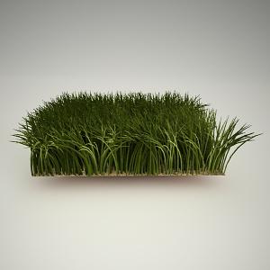 Grass 3 Free 3d Model Free3dbase Free 3d Models Free 3d Base